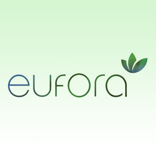 eufora windsor salon product